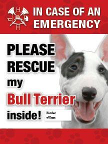 Bull Terrier Emergency Sticker