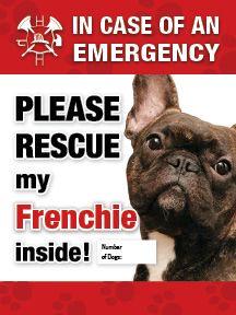 French Bulldog Emergency Sticker