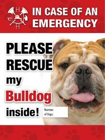 Bulldog Emergency Sticker