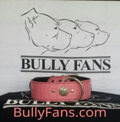 "2"" Pink Gator Dog Collar with breast cancer awareness medallion"