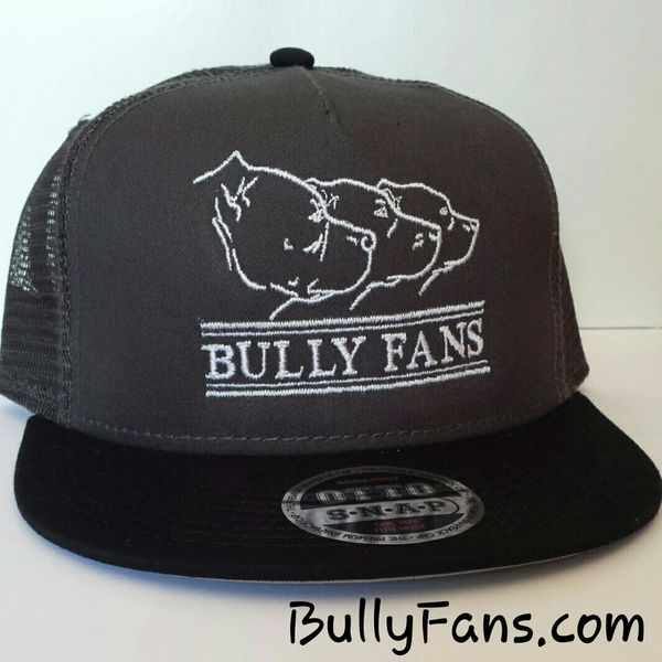 Bully Fans Logo Mesh Snapback Grey with WHITE