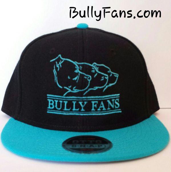 Bully Fans Logo Snapback Teal Bill