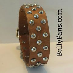 1.5 inch Tan Leather Dog Collar with Studs