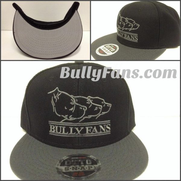 Bully Fans Logo Snapback Charcoal Grey