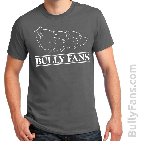 Bully Fans Logo T-shirt - GRAY