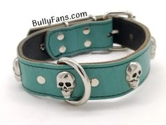 1.5 inch Teal Leather Dog Collar with Concho