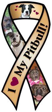 I Love My Pitbull Ribbon Magnet