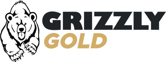 Grizzly Gold Spray Foam