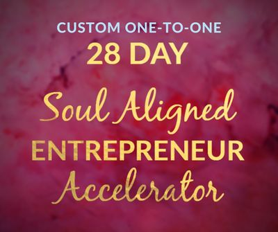 Soul Aligned Accelerator 28 Day one-to-one program
