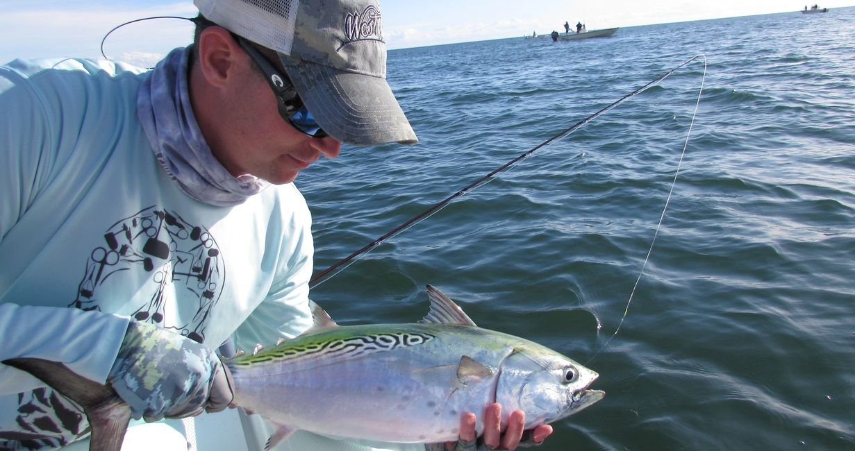 false albacore fishing charters Crystal Coast/Cape Lookout NC