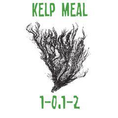 5lbs. Kelp Meal 1-0.1-2