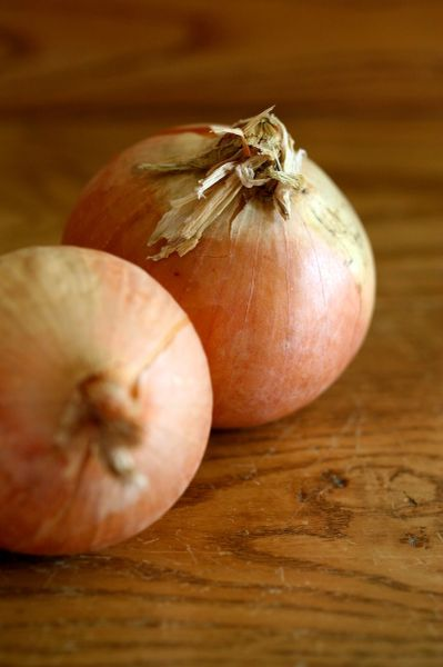 Onion - NZ Creme Gold