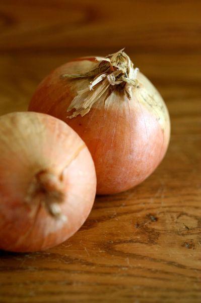 Onion - NZ Creme Gold