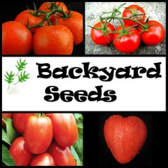 The Red Collection: Tomato Seed Variety Pack