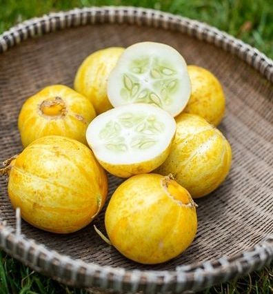 Cucumber - Lemon