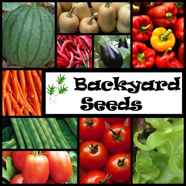 10 Spring Heirlooms - Vegetable Seeds