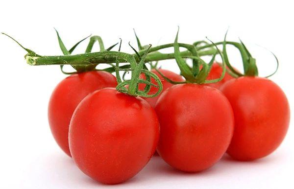 Tomato – Daydream
