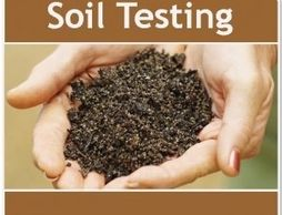 Soil test lawn and gardens Metairie and New Orleans