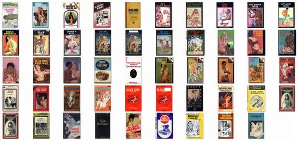 EBONY - 40 plus ebooks - BLACK-INTERRACIAL various - *used DVD in paper sleeve