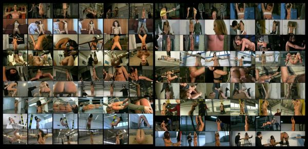 BDSM - LD-BP-15 - 18 scenes - 1 hr 47 min - *used DVD in paper sleeve - No Art - (Q=G-VG)