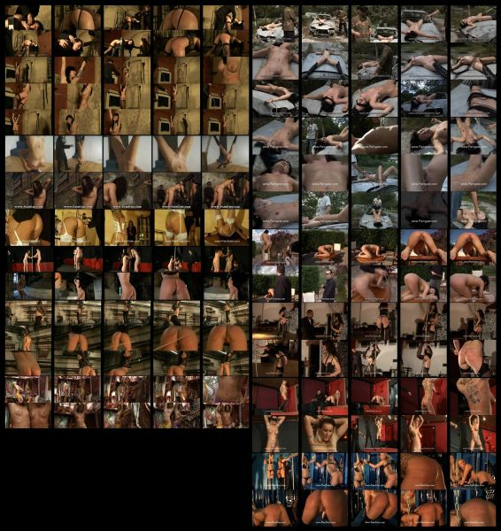 BDSM - PG-WW-D1 - 13 scenes - 3 hr 52 min - *used DVD in paper sleeve - no art - (Q=F-G-VG)