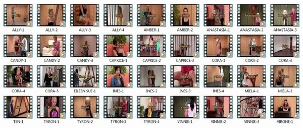 SS-BBW111213 - 13 models - 36 scenes - 2 hr 5 min - *used DVD in paper sleeve-no art-(Q=G-VG)