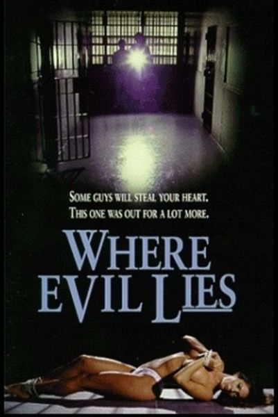 Where Evil Lies-1995 - 1 hr 22 min - *used DVD in paper sleeve-no art-(Q=G-VG)