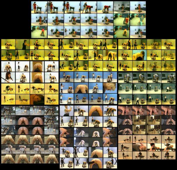 NWL - WHIPPING HORSE 2-7 models-15 scenes-1 hr 48 min - (Q=P-F-G)