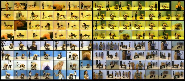 NWL - WHIPPING HORSE 3-22 models-16 scenes-2 hr 22 min - (Q=P-F-G)