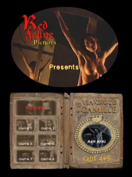 BDSM - Crucifix - RF - Crux 04 & 05 - 50 minutes - *used DVD in paper sleeve - NO ART - (Q=G-VG)