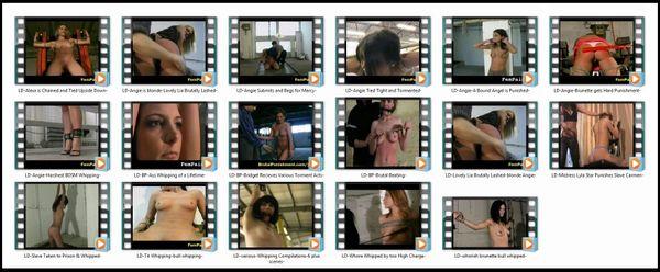 BDSM - LD-21 - 17 scenes - 1 hr 20 min - *used DVD in paper sleeve - NO ART - (Q=F-G)
