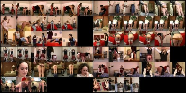 BDSM - RSF - Southern Strappings 2 - 14 scenes - 55 min - *used DVD in paper sleeve - NO ART - (Q=G-VG)