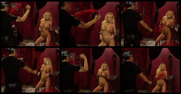 BDSM - BV - Captured - 4 scenes - 58 min - *used DVD in paper sleeve - art on disc face - (Q=VG)