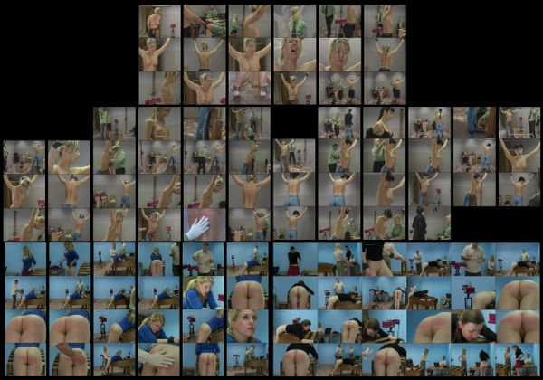 BDSM - SS-R - Robotic Whipping 111 - 5 scenes -1 hr 5 min - *used DVD in paper sleeve - NO ART - (Q=G-VG)