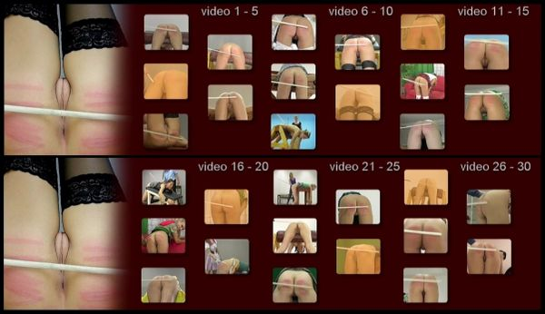 SS-SFW-016 - strip for the whip - 30 scenes - CANING - 1 hr 36 min - *used DVD in paper sleeve - NO ART - (Q=G-VG)