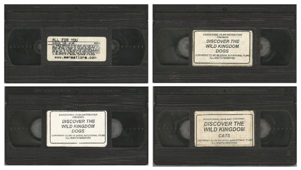 VHS - 4 in lot - LISA ANN sex tapes - *used VHS Tape NO case NO artwork