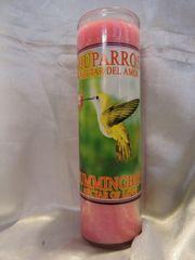 Chuparrosa (Rosa) - Hummingbird (Pink)