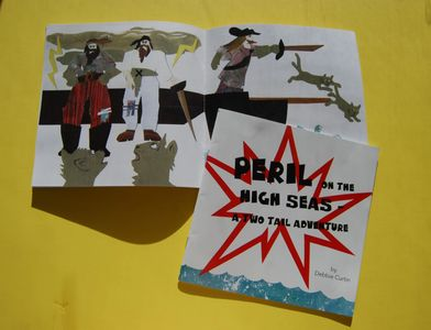 PERIL ON THE HIGH SEAS is a captivating wordless book appropriate for any reading ability.