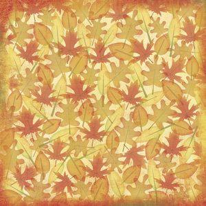 Fall Foliage 12x12 Paper