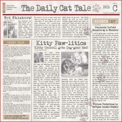 Cat Chronicle 12x12 Paper