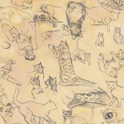 Cats 12x12 Paper