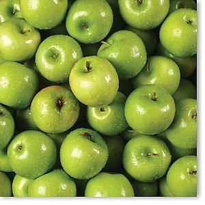 Apples Green 12x12 Paper