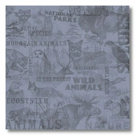 Wild Life Collage 12x12 Paper
