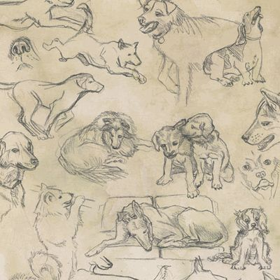 Dogs 12X12 Paper