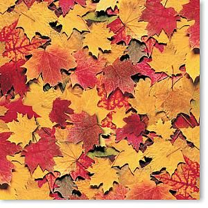 Fall Leaves 12x12 Paper