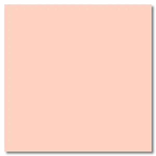 Pastel Peach Vellum 12x12 Sheet