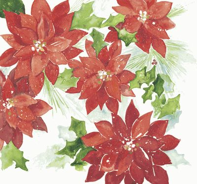 Poinsettia 12x12 Paper