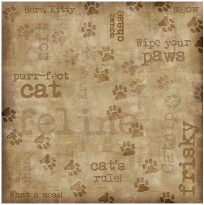 Cat Tracks 12x12 Paper