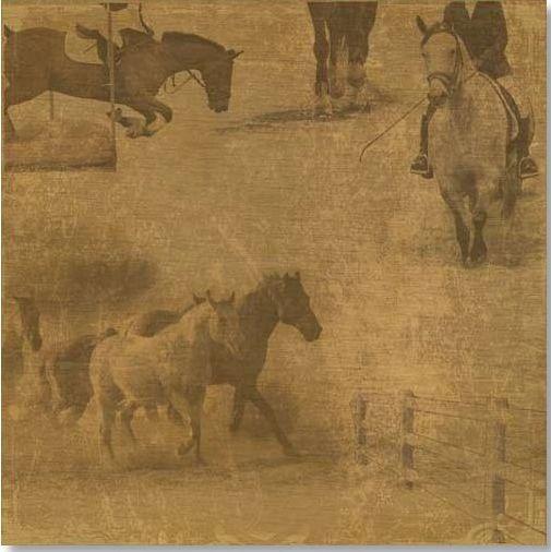 Equestrian Course 12x12 Paper