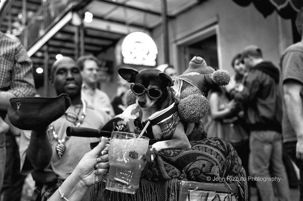 2017 New Orleans Destination Photo Tour: April 2nd - 6th